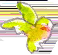 イラスト 水彩 鳥