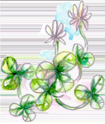 イラスト 水彩 植物